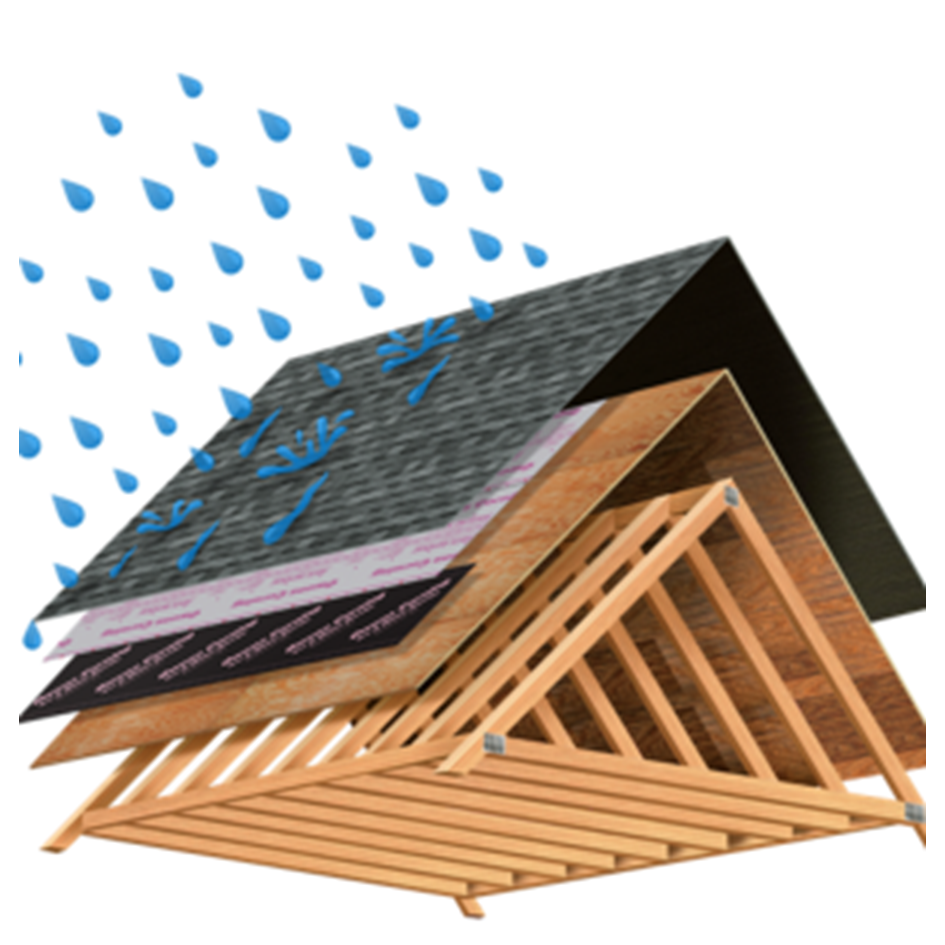 Our Services – Evolution Waterproofing